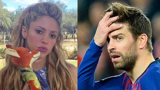 Shakira tiene nuevo integrante de familia