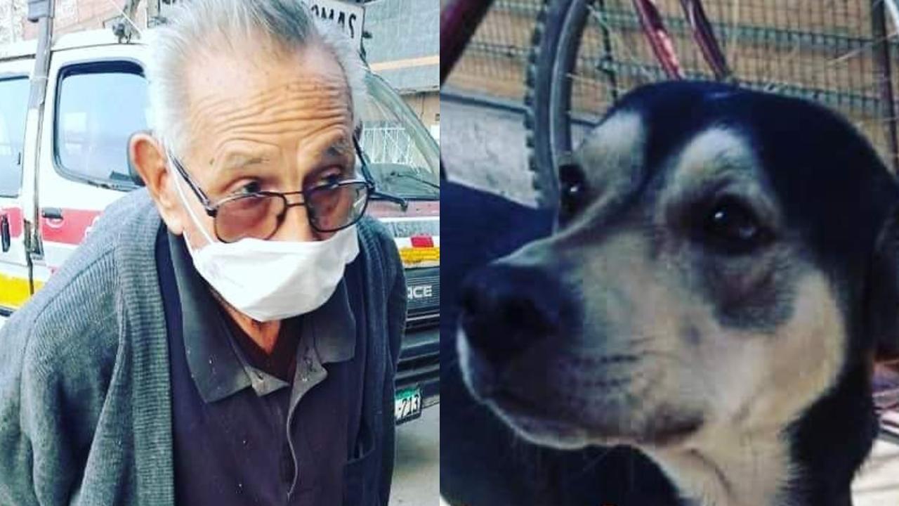 Abuelo de 84 años busca perro perdido