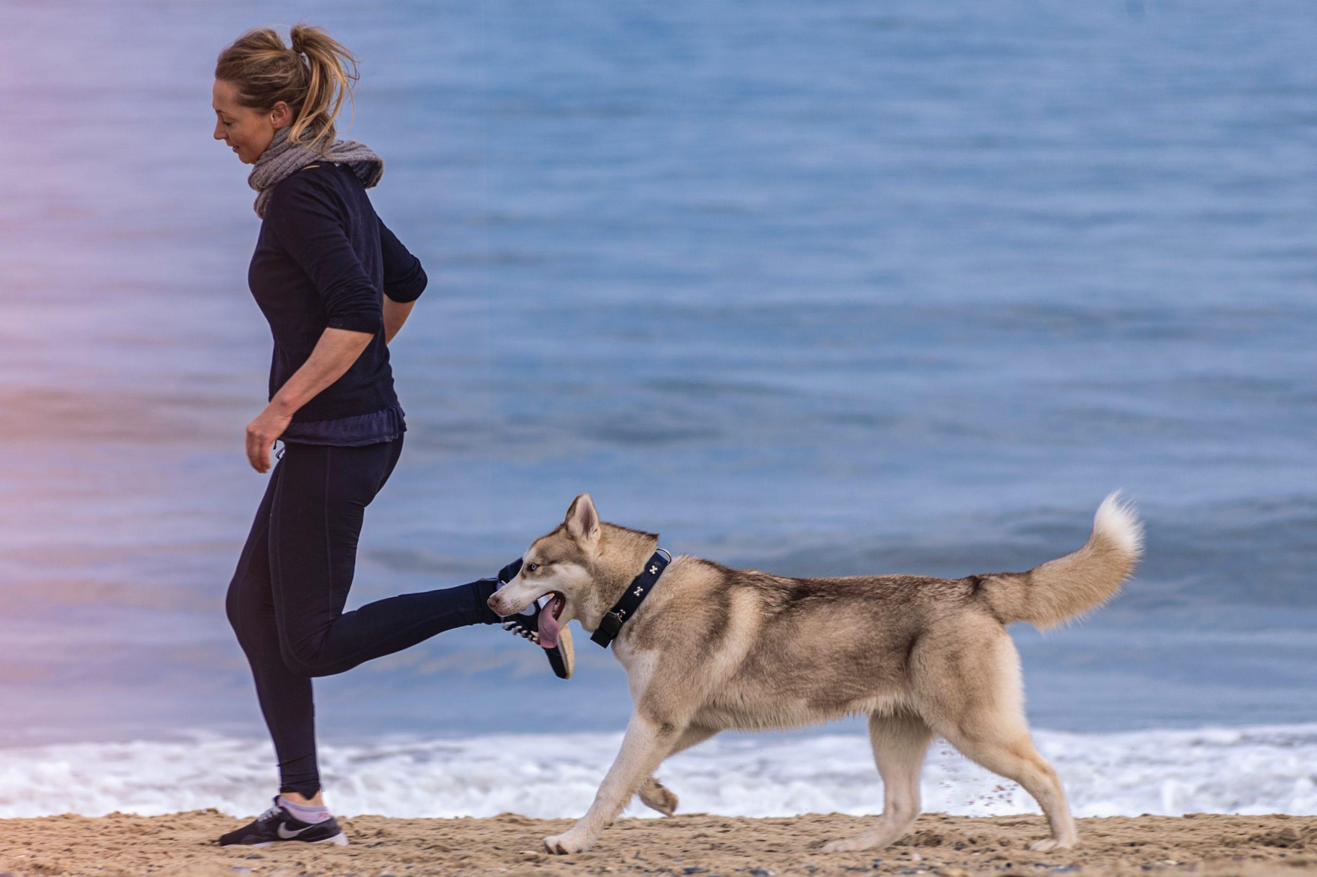 Mujer haciendo ejercicio con perro