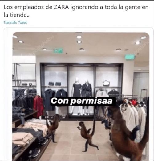 Memes empleados zara cuando te ven entrar
