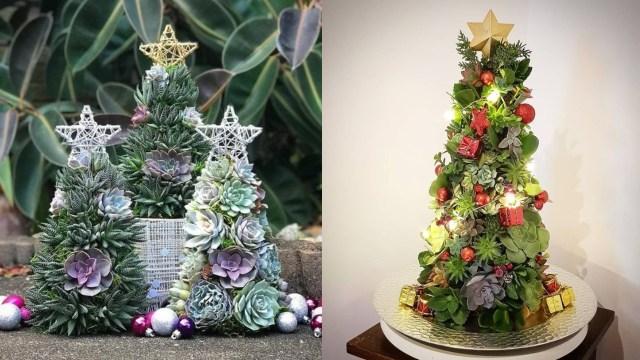 Árbol de Navidad con suculentas