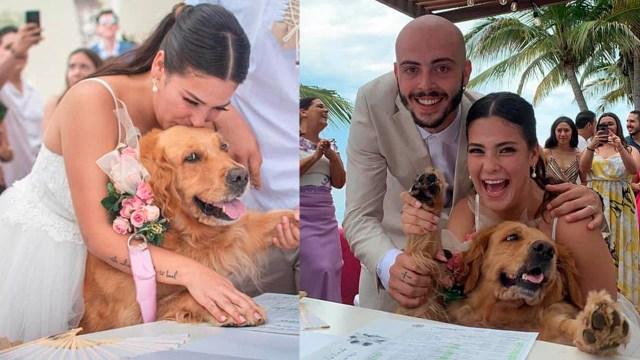 Pareja elige a su perrita como testigo en su boda y enternece al internet