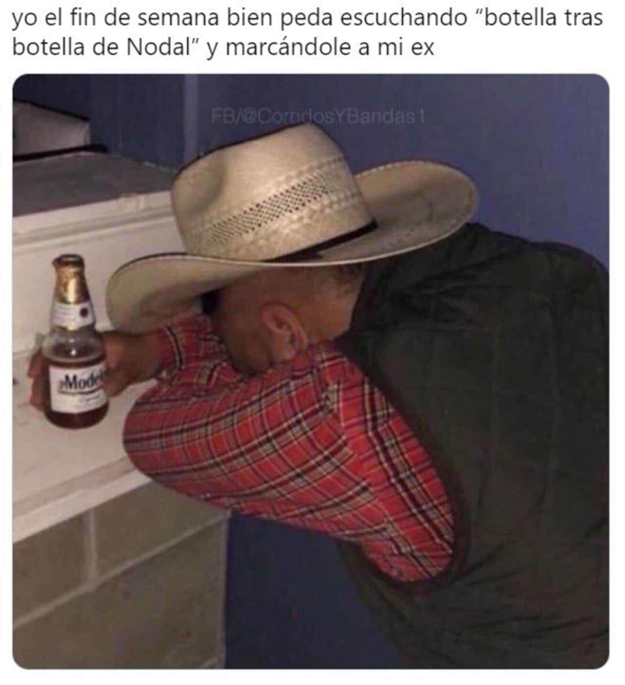 Botella tras botella memes nodal gera mx
