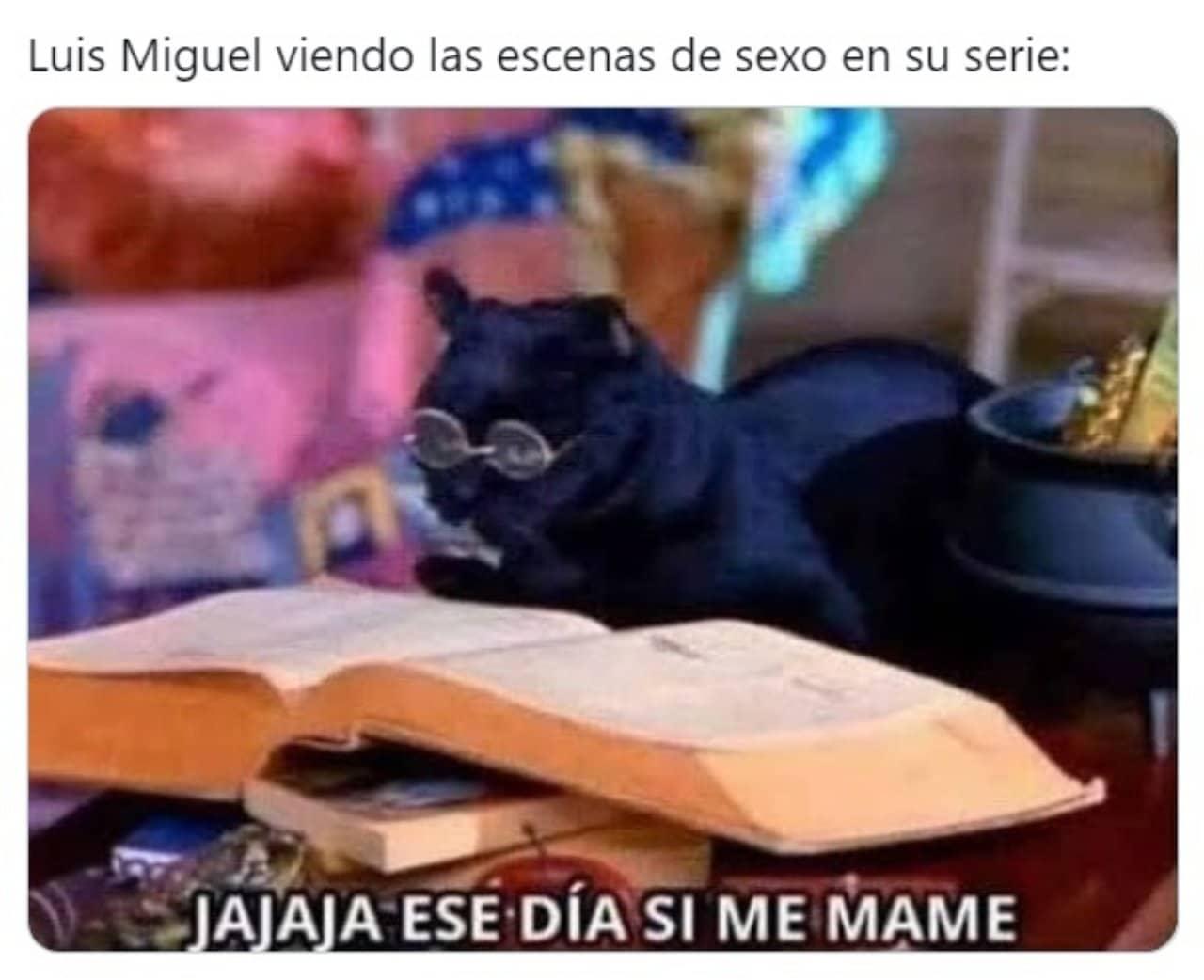 Meme gato de Sabrina