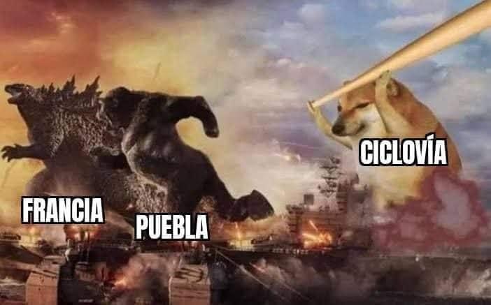 poblanos ciclovía memes