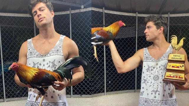 Danilo Carrera recibe críticas tras presumir su afición por las peleas de gallos