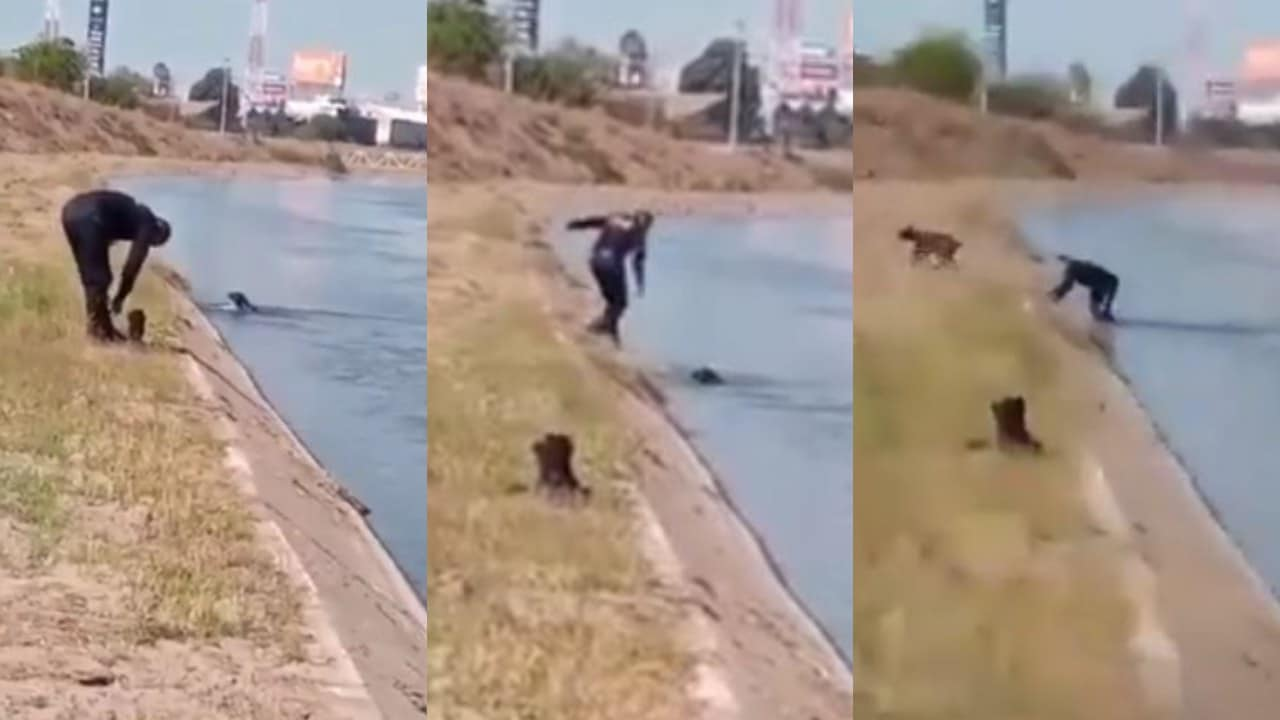 Policía de Culiacán salva a un perro de ahogarse en el canal