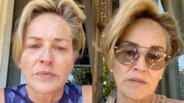 Sharon Stone sobrinito