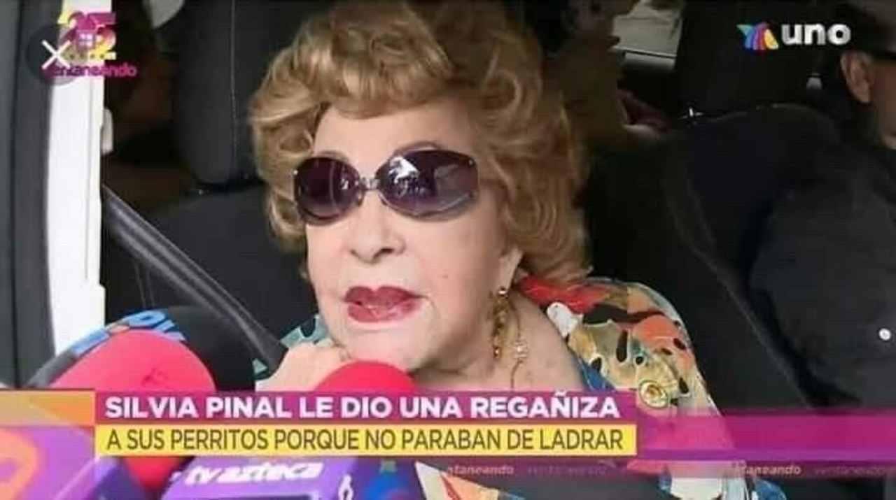 Silvia Pinal se enoja con sus perritos