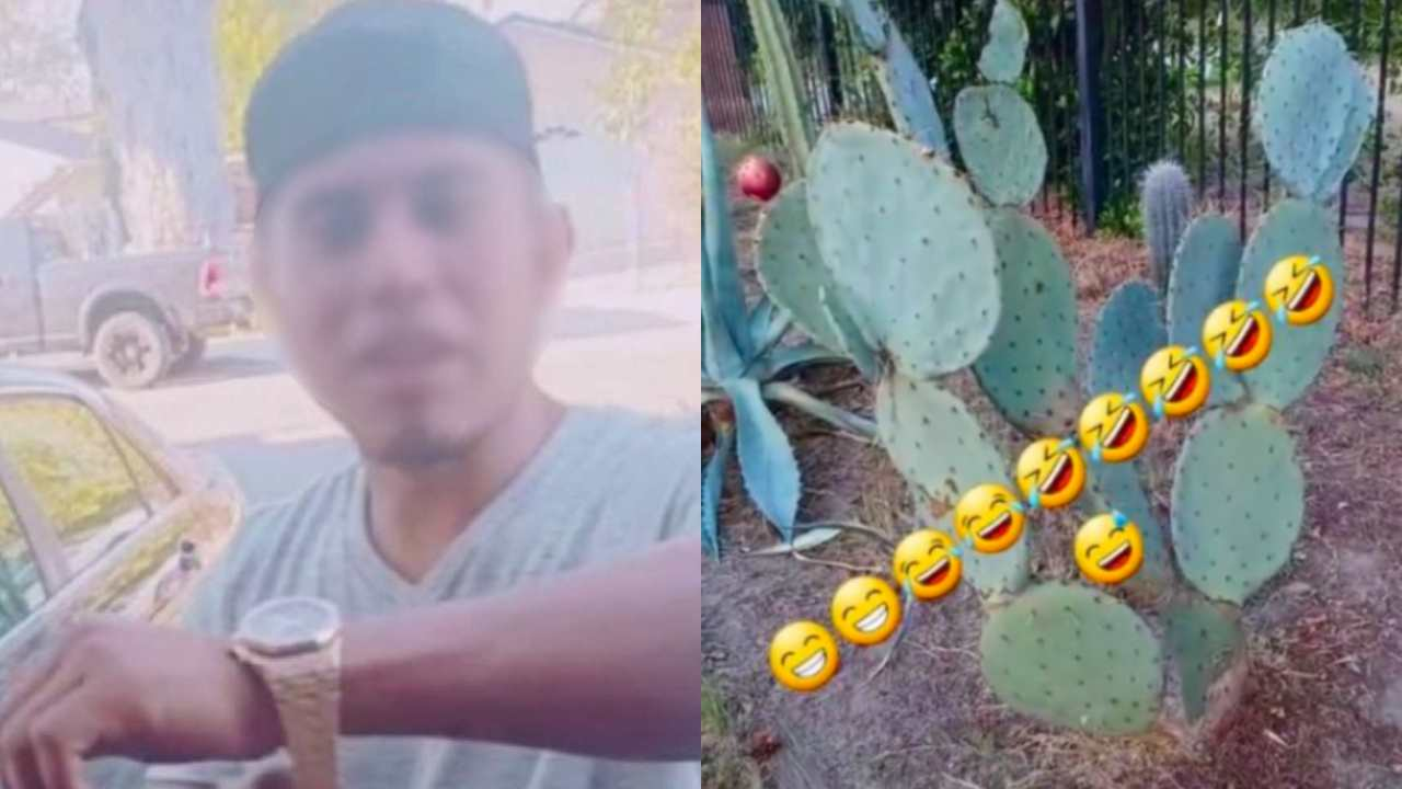 """Extranjero insulta a mexicanos por comer nopales y nos compara con """"vacas y marranos"""""""