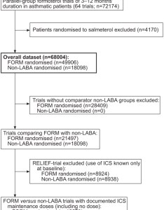 Download figure also long acting agonists  review of formoterol safety data from rh erjsjournals