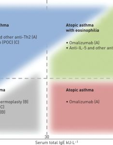 Download figure also asthma phenotypes and ige responses european respiratory society rh erjsjournals