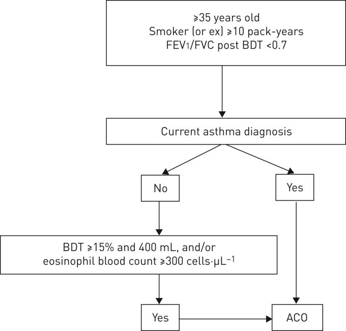 Algorithm For Identification Of Asthma Copd Overlap Consensus Between The Spanish Copd And Asthma Guidelines European Respiratory Society