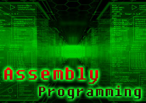 Text Information (Assembly)
