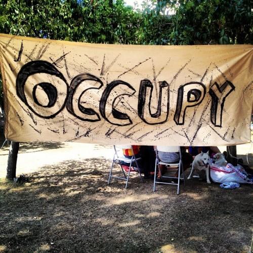 Occupy_Gezü_Büyükpark_İsgali_8