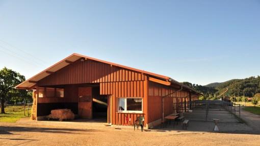 Unser Paddockboxenstall bietet nicht nur 24 Pferden ein Dach überm Kopf. Auch für den Menschen haben wir eine gemütliche Stube.