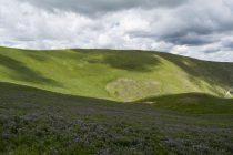 Monte Lieto