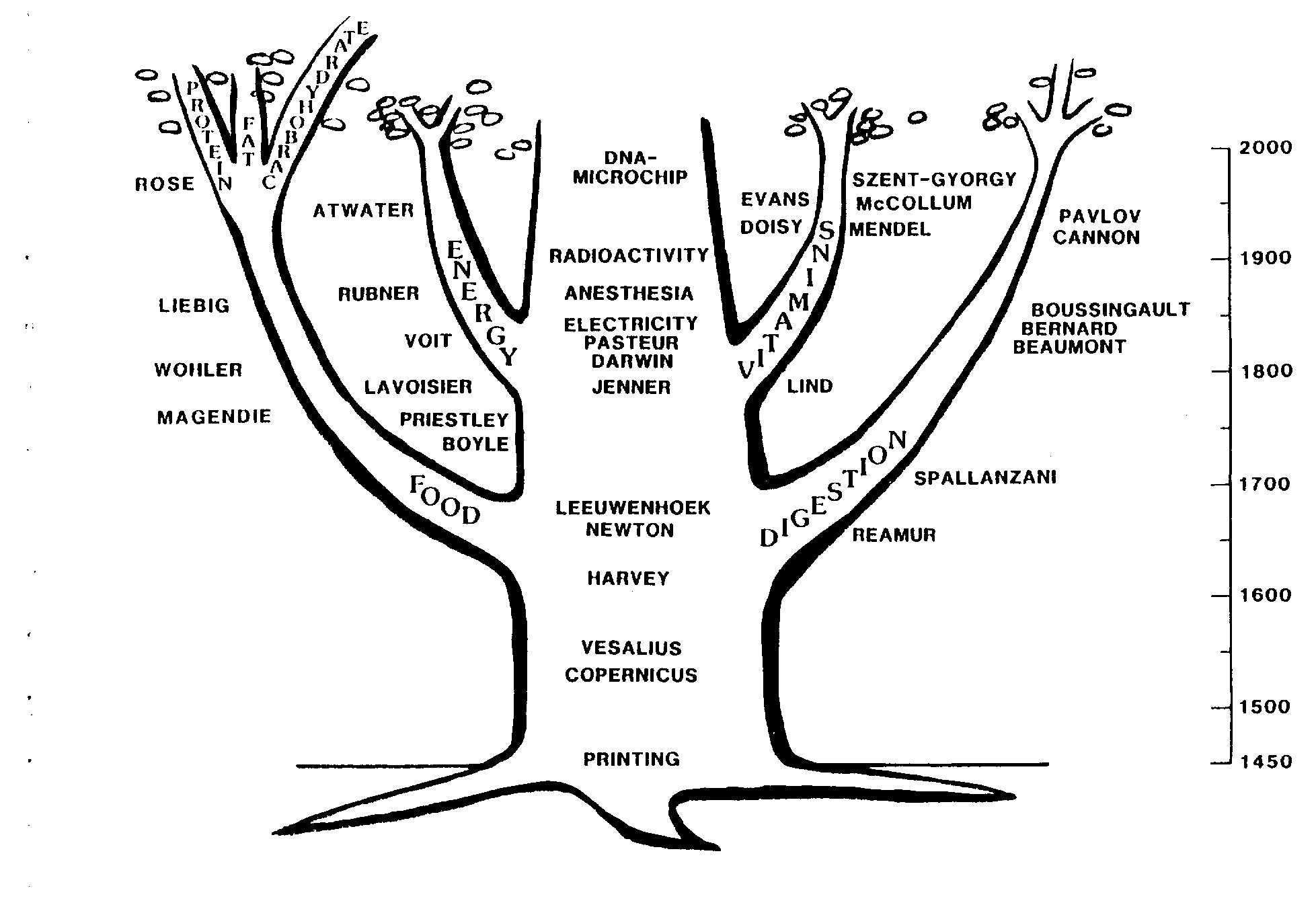 Ernahrungswissenschaftsgeschichte