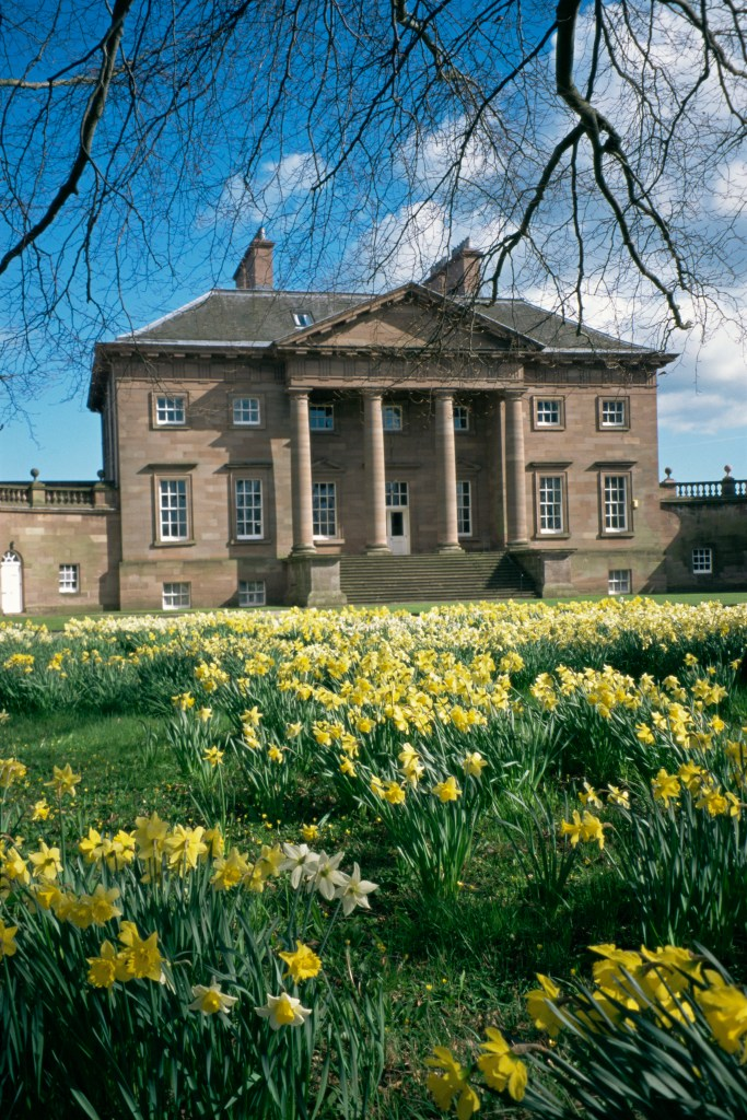 Exterior of Paxton House, with daffodils growing in front