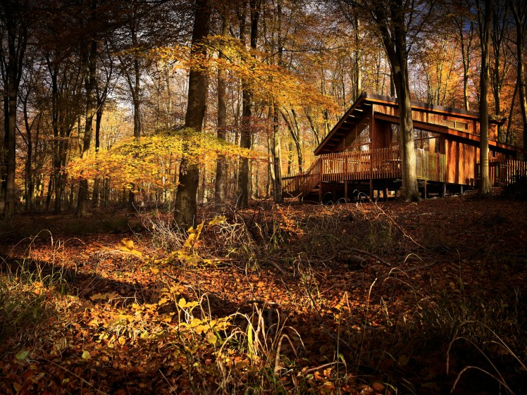 A Forest Holidays lodge in the autumn