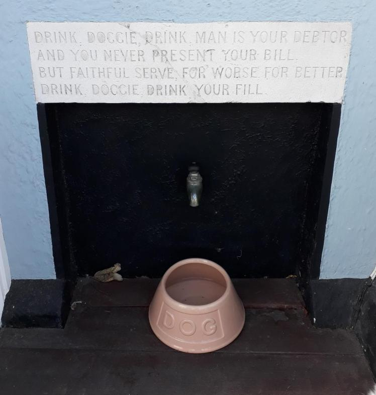Water bowl by dog-friendly sign in Aldeburgh, Suffolk