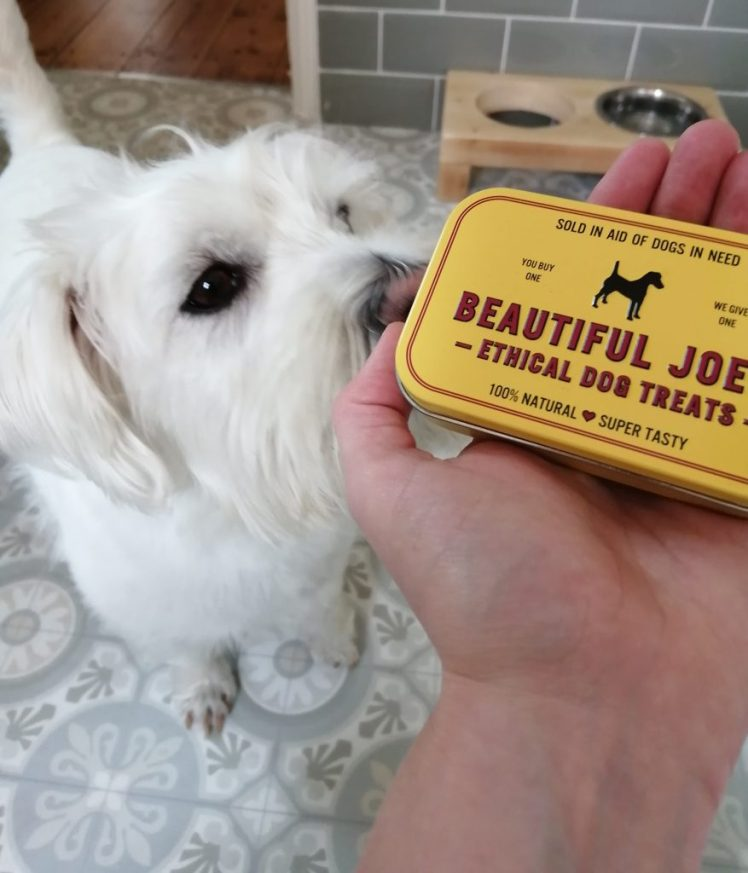 Ernie with his tin of Beautiful Joe's treats