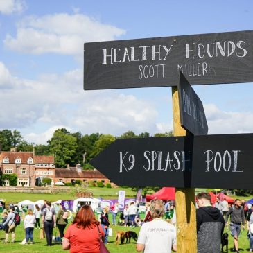Signpost to direct Dogstival crowds