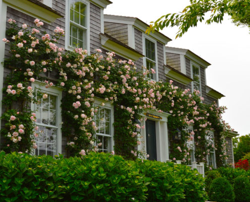 nantucket landscaping services