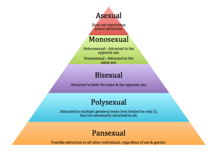 Sexual Orientation Pyramid