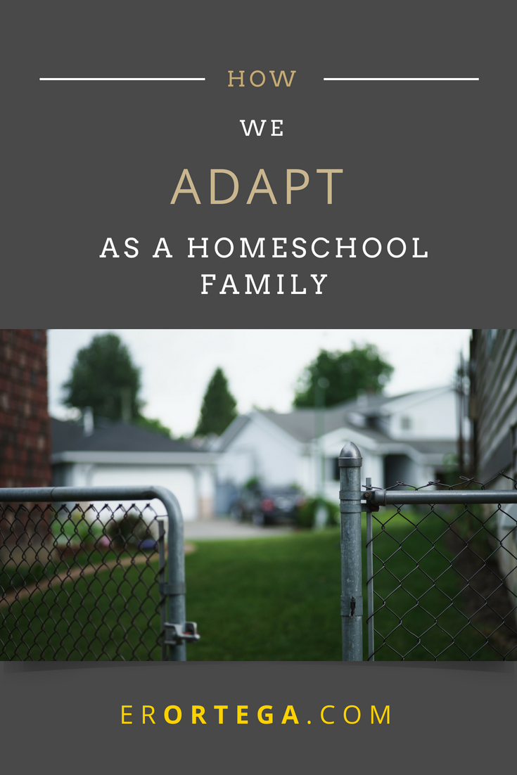We press on with life as unconventional as it is to be seen during the waking hours of daylight, waiting for the next opportunity for us to emerge from our homes. Much of the time is spent in this way, adapting to a crisis, making room for failure, getting places. Are you a homeschool family? Can you relate to this? Click to read full post.