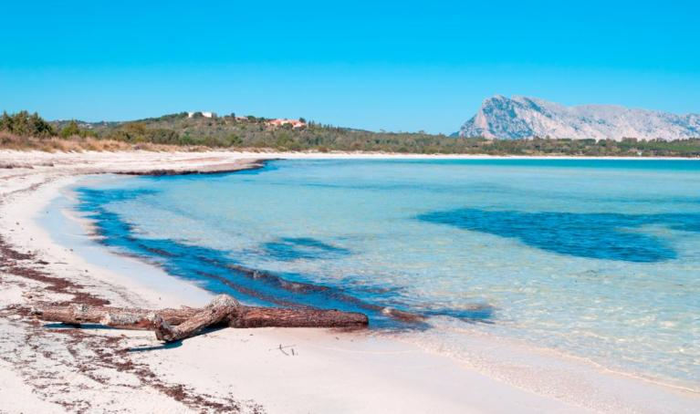 [Spiagge] – Sardegna – Cala Brandinchi
