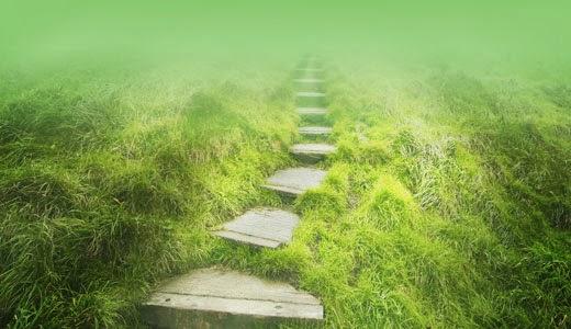 spiritual_path