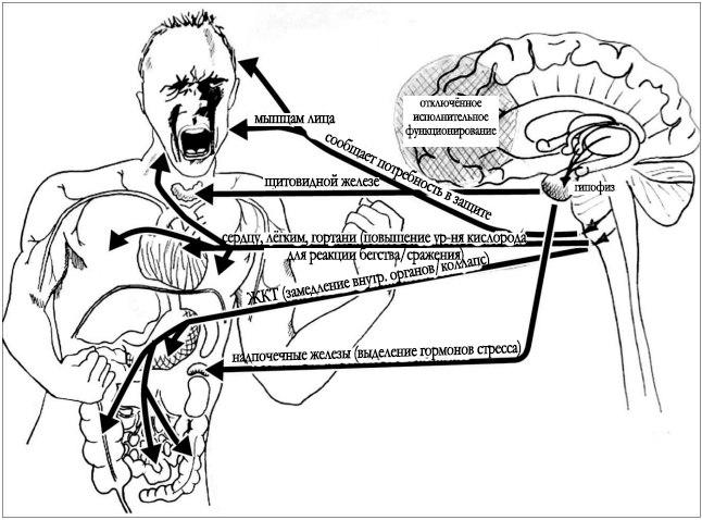 Последствия психотравмы