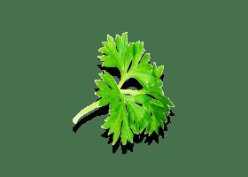 Эронестил - эффективное средство для потенции