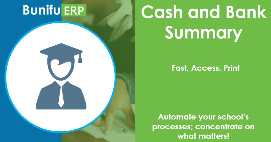 Bunifu ERP Cash and Bank Summary