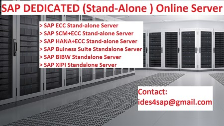 SAP Dedicated Server | ERP2Access