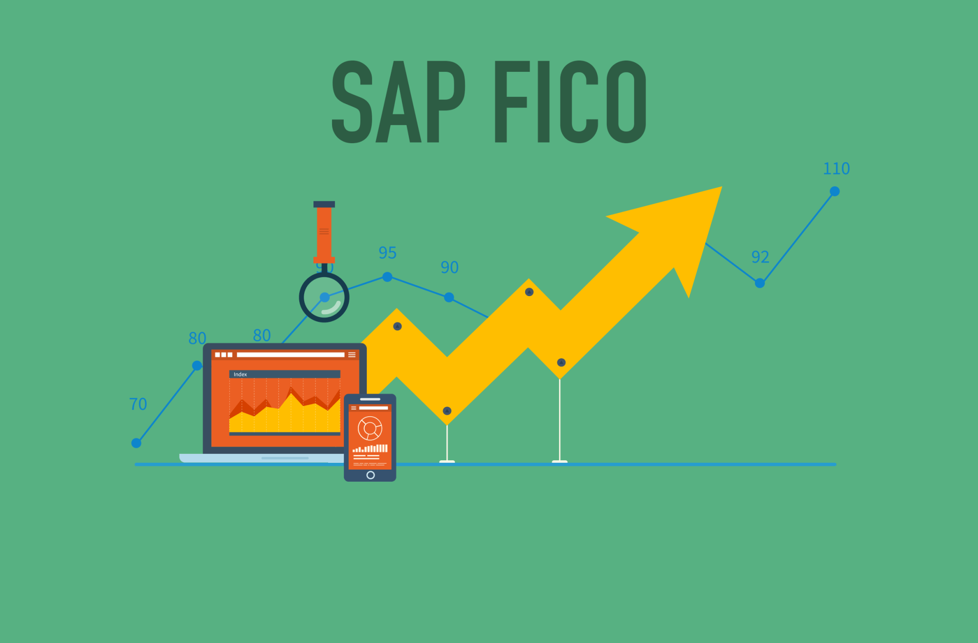 hight resolution of sap fico 2