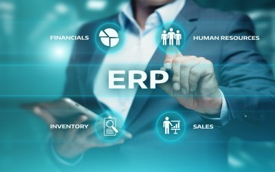 What ERP consultants actually do?