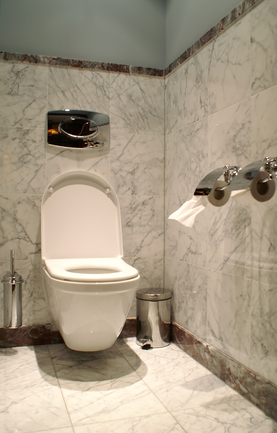 Power Flush Toilet