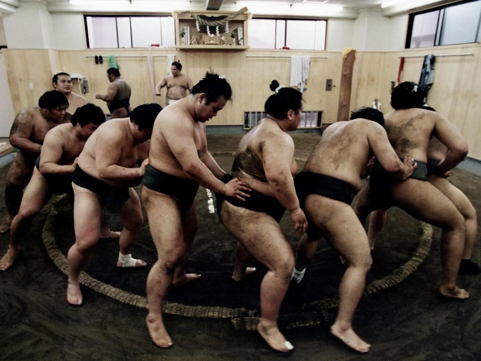 Bezoek een sumo training