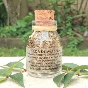 Flor de Macela