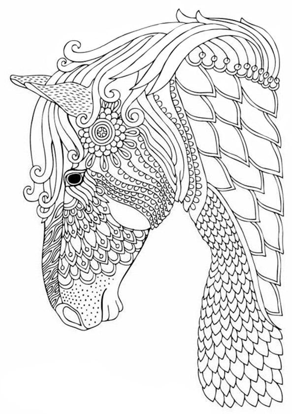 Pferde 4 Ausmalbilder für Erwachsene