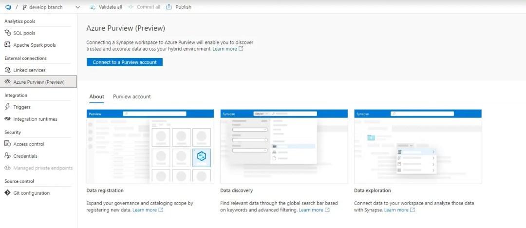 Azure Purview Management HUb