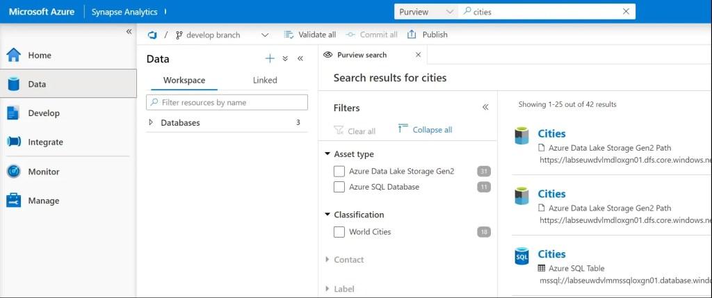 Azure Purview Integration