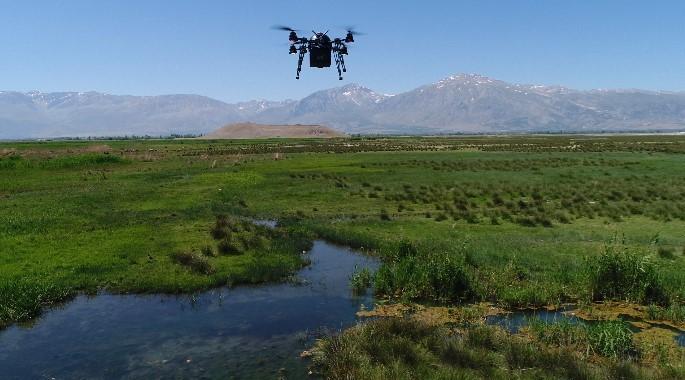 Ekşisu Mesire Alanı çevresi drone ile ilaçlanıyor