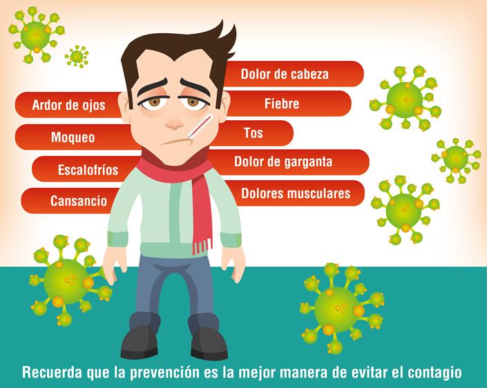 La Gripe o Influenza- Enfermedad Viral — Steemit