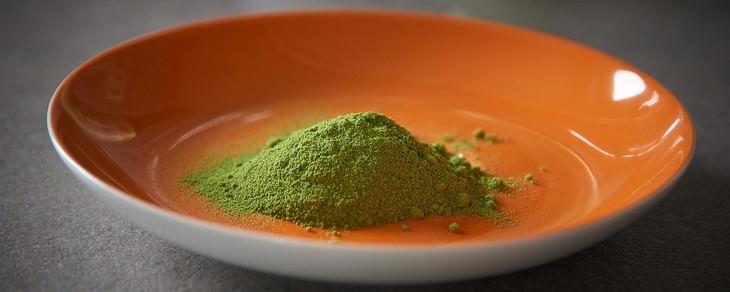 moringa, planta anti cancer