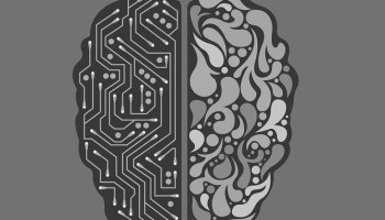 efectos quejas cerebro humano