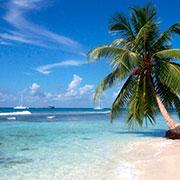 En una linda playa exótica