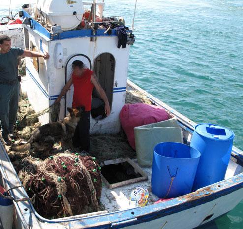 Oficina turismo marruecos boicot a marruecos paremos el for Oficina turismo marruecos